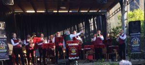 Maibaumsetzen Schenkenberg - Blasmusikverein Schenkenberg e.V.